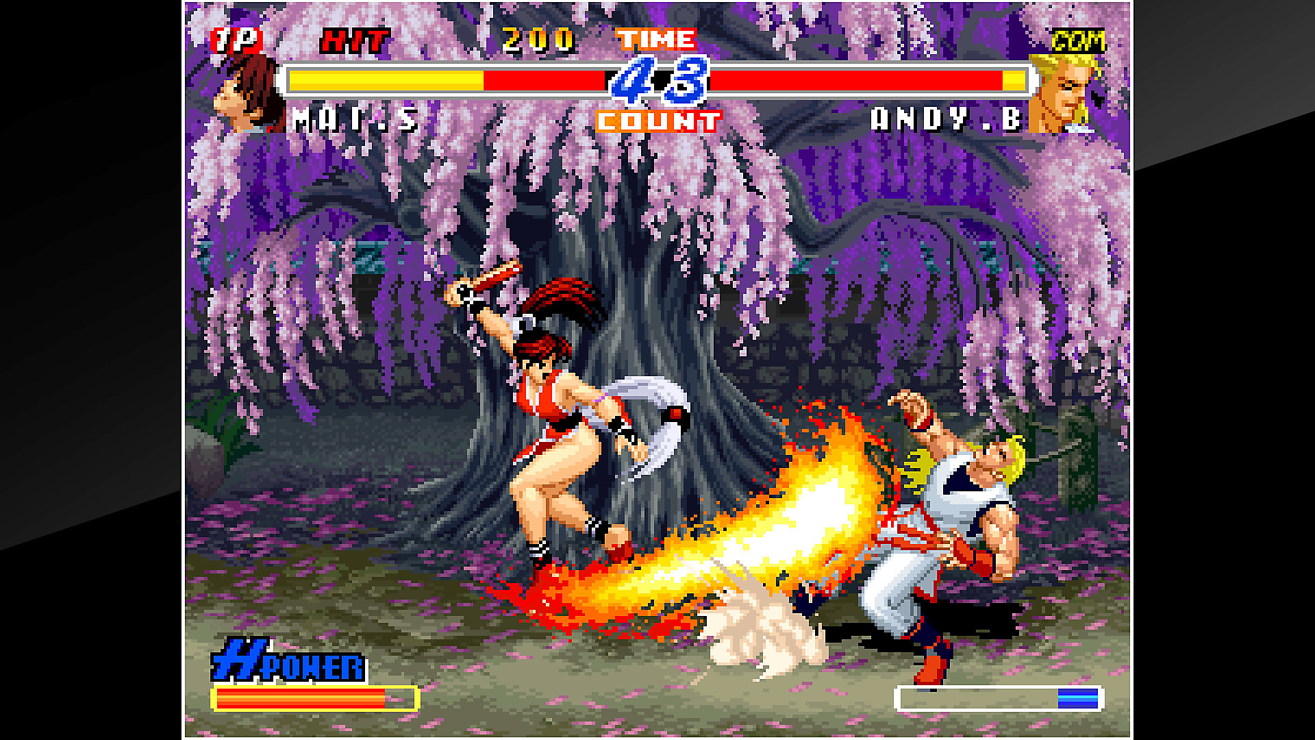 ACA NEOGEO REAL BOUT FATAL FURY 2 Gameplay Screen
