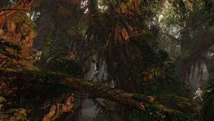 UNCHARTED 2: Among Thieves™ Screenshot 6