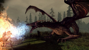 Dragon Age: Origins™ Screenshot 8