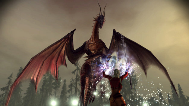 Dragon Age: Origins™ Screenshot 4