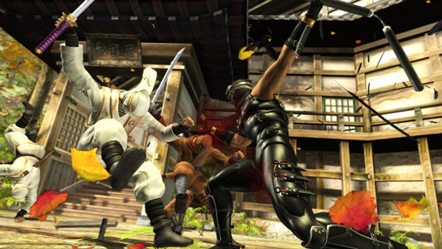 Ninja Gaiden® Sigma Screenshot 1