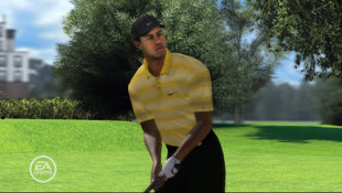 Tiger Woods PGA Tour® 08 Screenshot 9