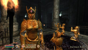 The Elder Scrolls IV: Shivering Isles  Screenshot 3