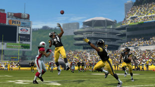 Madden NFL 10 Screenshot 8