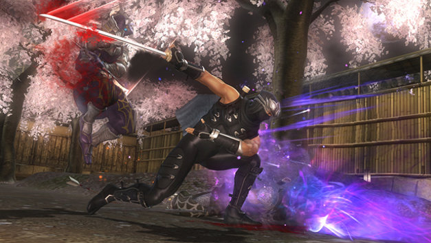 NINJA GAIDEN® SIGMA 2 Screenshot 4