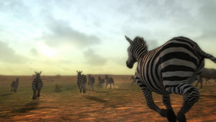 Afrika™ Screenshot 5