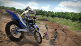 MX vs ATV® Alive™