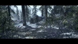 The Elder Scrolls® V: Skyrim™  Video Screenshot 2