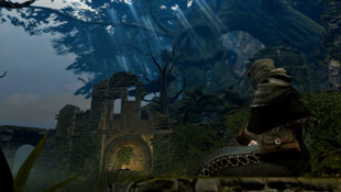 Dark Souls™ Screenshot 5