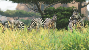 Cabela's® African Adventures Screenshot 3