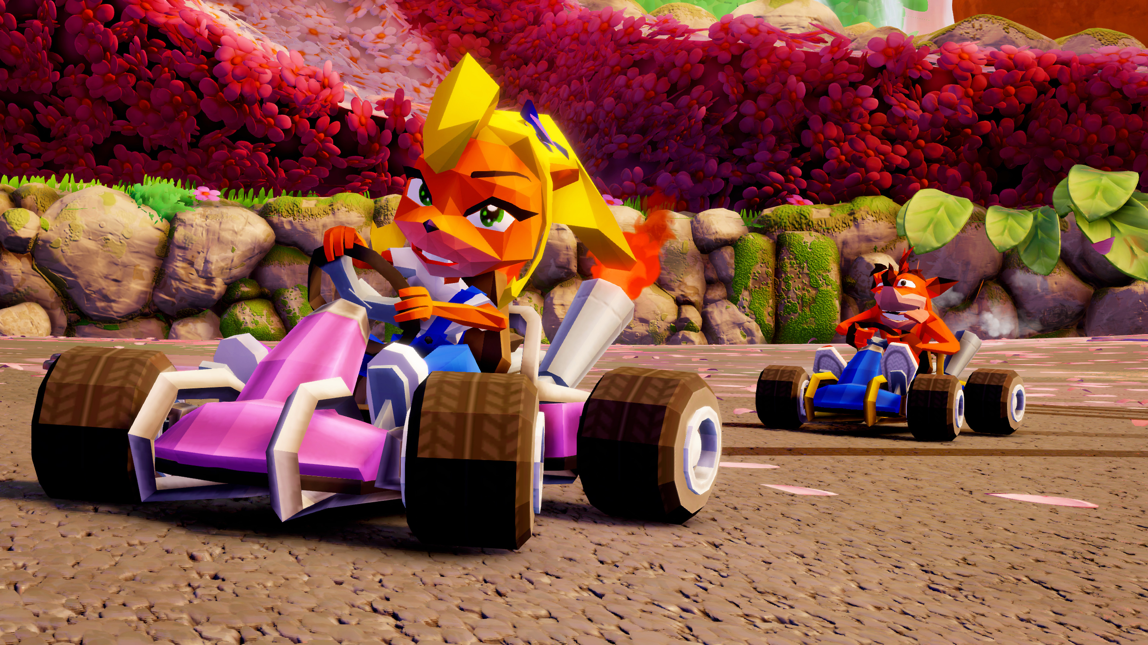 Crash Team Racing Nitro-Fueled - Exclusive Content Screenshot 1