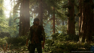 Days Gone Screenshot 6