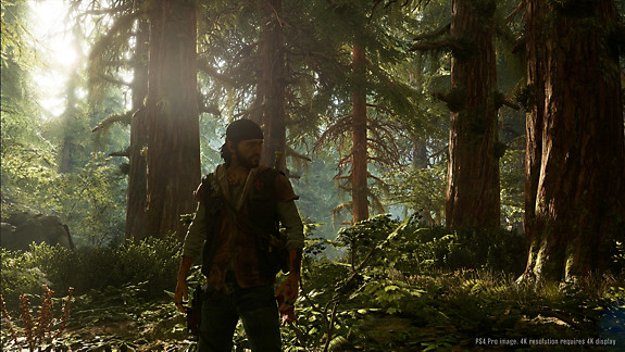 Days Gone - Deacon standing in a forest