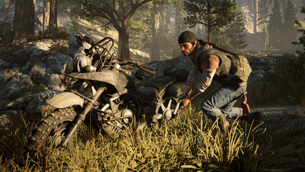 Days Gone Screenshot 16