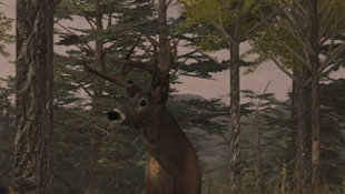 Deer Simulator Screenshot 3