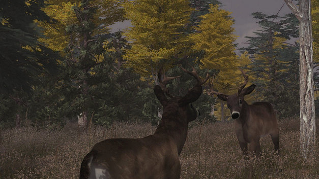 Deer Simulator Screenshot 4