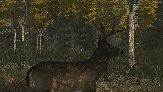 Deer Simulator Screenshot 1