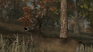 Deer Simulator Screenshot 5