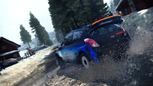 DiRT Rally Screenshot 11