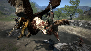 Dragon's Dogma™ Screenshot 21