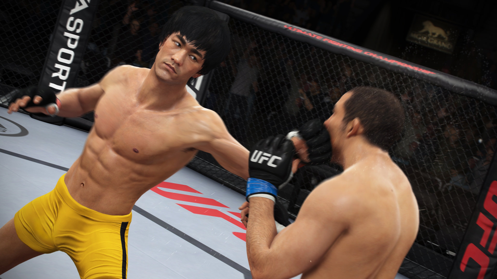 ufc game for pc free download full version