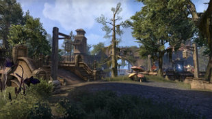 The Elder Scrolls® Online: Morrowind® Screenshot 2
