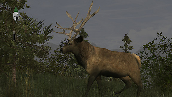 Elk Simulator - Screenshot INDEX