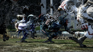Final Fantasy XIV: A Realm Reborn Screenshot 2