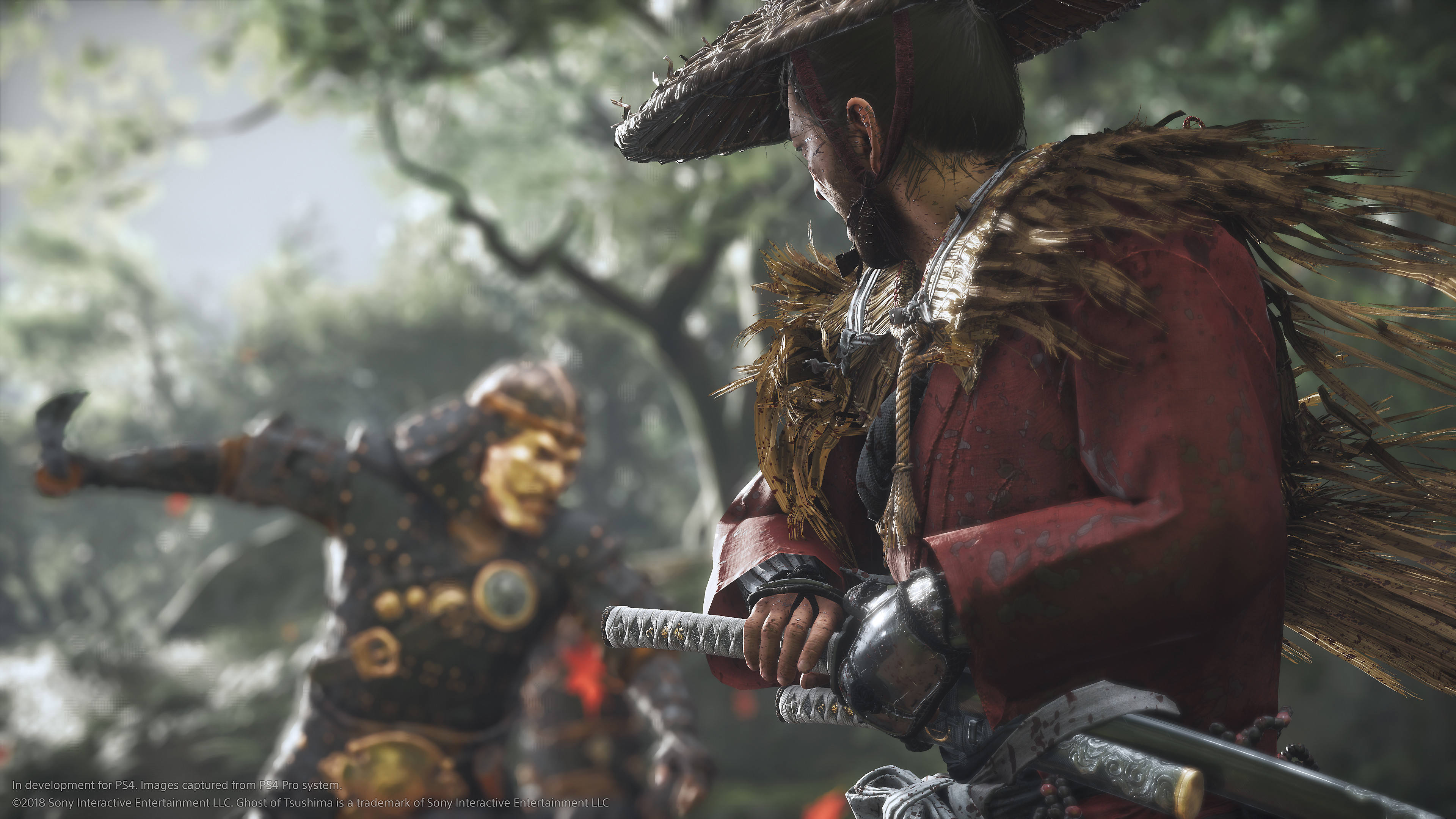 Ghost of Tsushima Screenshot - Jin preparing to wield his katana