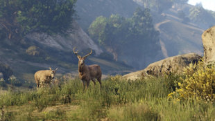 Grand Theft Auto V Screenshot 18