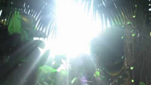 BUZZ!™ Junior Jungle Party Video Screenshot 2