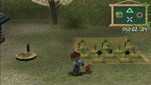 Harvest Moon®: A Wonderful Life Special Edition Screenshot 4