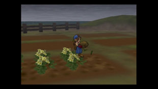 Harvest Moon®: Save the Homeland Screenshot 6