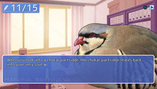 Hatoful Boyfriend Screenshot 3