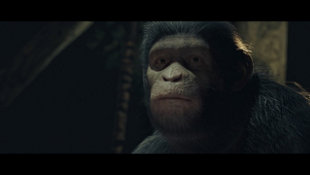 Planet of the Apes: Last Frontier Screenshot 9
