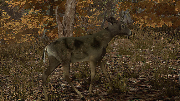 Pro Deer Hunting - Screenshot INDEX
