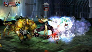 Dragon's Crown Screenshot 5