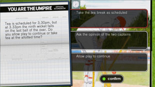 You Are The Umpire Screenshot 2