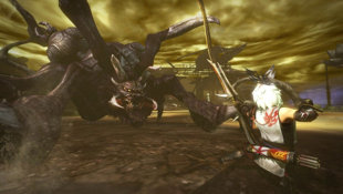 TOUKIDEN: The Age of Demons Screenshot 8