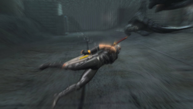 Ninja Gaiden® Sigma Plus Screenshot 1