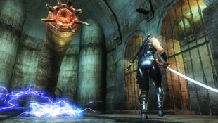 Ninja Gaiden® Sigma Plus Screenshot 3