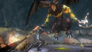Ninja Gaiden® Sigma Plus Screenshot 9
