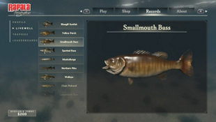 Rapala Fishing: Pro Series Screenshot 5