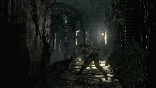 Resident Evil HD Screenshot 9