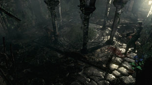 Resident Evil HD Screenshot 11