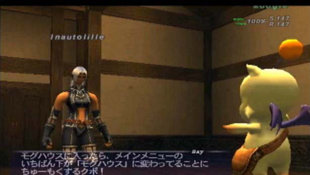 FINAL FANTASY® XI Screenshot 23
