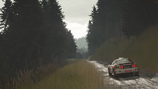 sebastien-loeb-rally-evo-screen-04-ps4-us-22mar16