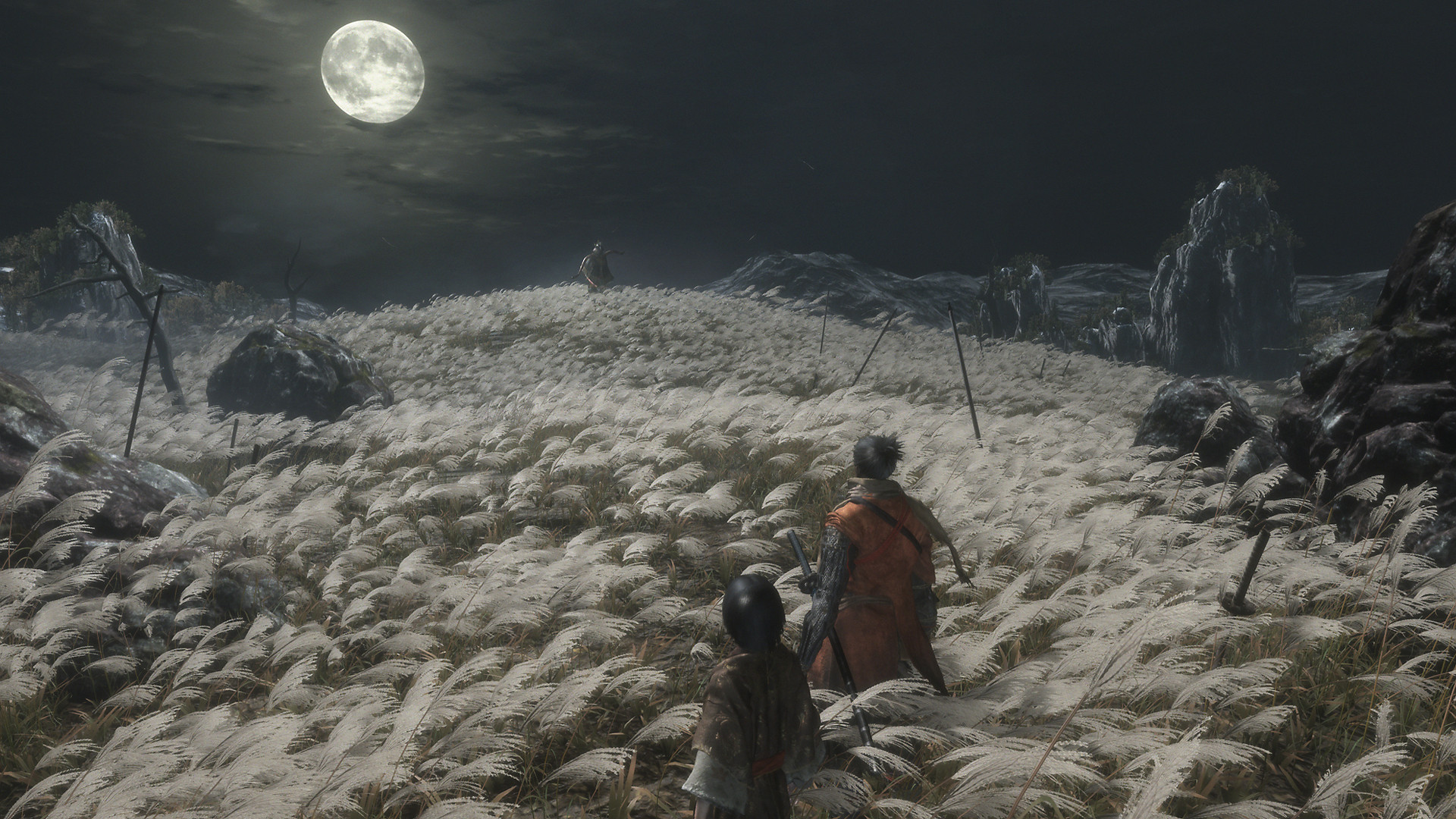 Sekiro Shadows Die Twice - Cinematic Video Background