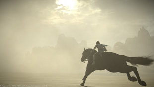 SHADOW OF THE COLOSSUS Screenshot 9