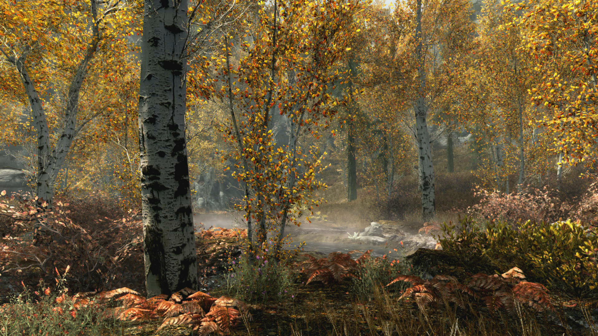 The Elder Scrolls V: Skyrim Special Edition Game | PS4